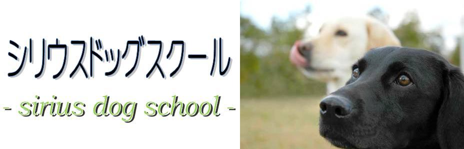 シリウスドッグスクール=京都,犬の訓練所,犬のしつけ,犬の保育園,フライボール,訓練ならぜひ当スクールへ!!ドッグホテル,しつけ教室も行っております=